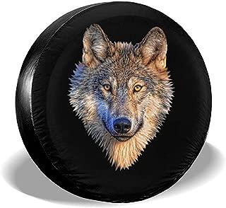 Amazon.es: Los Lobos: Coche y moto