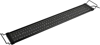 NICREW ClassicLED Plus Planted Aquarium Light, Full Spectrum LED Fish Tank Light for..