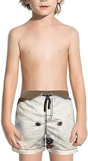Best polar bear swim shorts Reviews