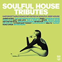 Soulful House Tributes (Unforgettable Songs Revisited In Soulful Deep House)