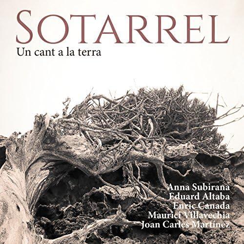 Sotarrel