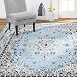 Home Dynamix Premium Asiana Traditional Area Rug, Oriental Light Blue 7'8'x10'7'