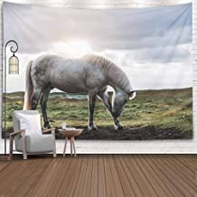 ROOLAYS Decorative Wall Decor, Home Art Decor Icelandic Horse in The Field of Scenic Nature Landscape Iceland Breed as Law Horses 80X60 Inches for Living Room Dorm Background Tapestries