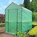 SKYLANTERN Serre de Jardin en Plastique - Serre Jardin avec étagères et Fermeture à Zip - Tente Abri pour Plante et Culture (Dimensions : 125 x 190 x 190 cm)