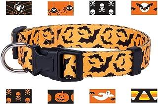 Native Pup Halloween Dog Collar