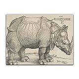 Poster - Albrecht Dürer Rhinocerus 40x30 cm ca. A3 - Alte