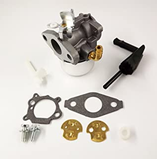 BH-Motor New Carburetor for Briggs & Stratton 698479 591925 698475 693518 with Gaskets