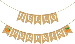 Rainlemon Jute Burlap Hello Pumpkin Banner Fall Autumn Baby Shower Diaper Party Birthday Party Garland Decoration