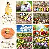 'FRÜHLING- & OSTERKARTEN' Postkarten-Set (12 St.) von EDITION COLIBRI - ein bunter Mix aus lustigen Osterpostkarten, Blumenkarten sowie nostalgischen Grusskarten für Ostern
