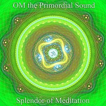 Om the Primordial Sound: Healing Through Sound Vibration