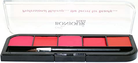 Bonjour Paris Proffessional Lip Palette with Free Brush, Shade 5 and 1 Brush, 9.5g