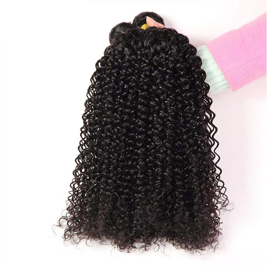 思春期のアサー出演者女性130%密度髪織りブラジルディープウェーブ1バンドルRemyブラジルディープウェーブ