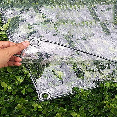 Bnoeo Lona Transparente para Jardín Impermeable Anti Congelación Película Impermeable A Prueba De Lluvia Toldo De Aislamiento Cubierta De Plástico