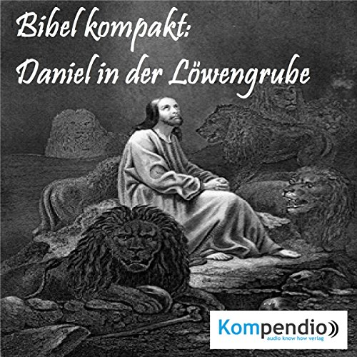 Daniel in der Löwengrube audiobook cover art