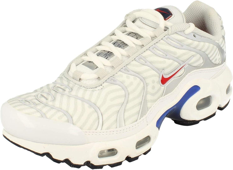 Nike Air Max Plus TN Junior Blanc - 37 1/2 : Amazon.fr: Chaussures ...