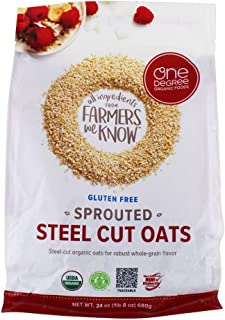 One Degree Organic Foods, Oats Sprouted Steel Cut, 24 Ounce