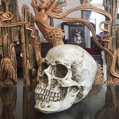 Skull Halloween Decoration,resin Human Skull Statue Replica Sculptur Figurine Jaw Moveable Desktop Skull Souls Skull Ornaments Home Decor-b 15x10cm(6x4inch)