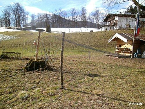Volierennetz, Vogelschutznetz 5,0m x 10,0m, 10,0cm Maschenweite - 2