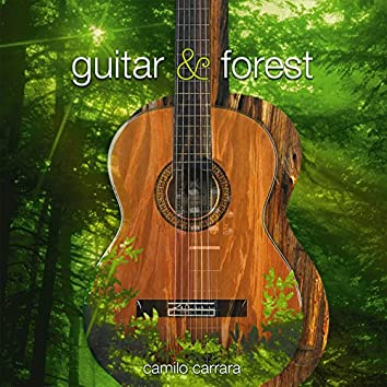 Guitar & Forest