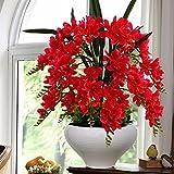 LOF-fei Fleur Artificielle Phalaenopsis Papillon Orchidée Bonsai Accessoire de Table à Manger Fausse Fleur décoration de Salon Maison en Soie,Pot de Fleur en céramique Rouge 45x50cmB