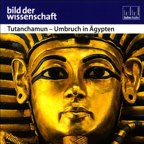 Tutanchamun - Umbruch in Ägypten - Bild der Wissenschaft audiobook cover art