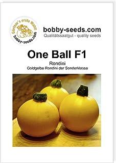 Bobby-Seeds Zucchinisamen One Ball F1 Portion