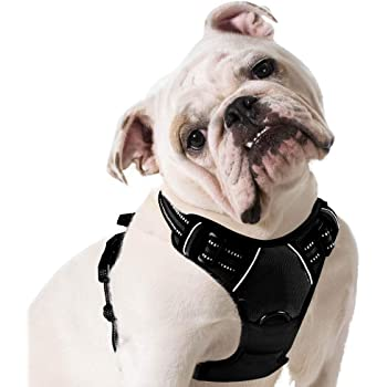 Eagloo Dog Harness No Pull, Walking Pet Harness with 2 Metal Rings and Handle Adjustable Reflective Breathable Oxford Soft Vest Easy Control Front Clip for Small Medium Large Dogs