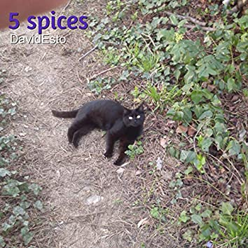 5 Spices