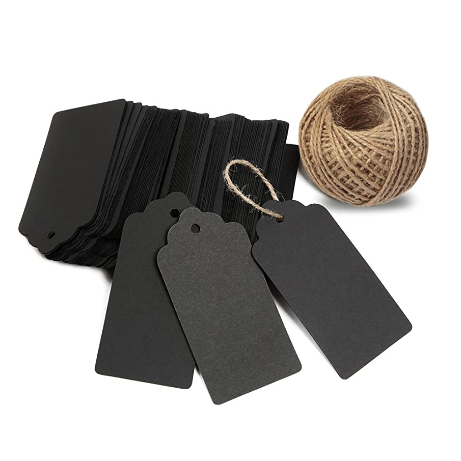 KINGLAKE 100 PCS Kraft Paper Blank Gift Tags with String Vintage Gift Tag Wedding Favor Hang Tags with 100 Feet Natural Jute Twine Retangle Tags for Crafts & Price Tags Labels