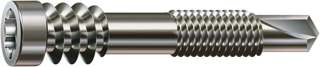 4 x 50 mm 500 St/ück,905536 EUROTEC Terrassenschraube Zylinderkopf TX15 mart.Edelstahl geh/ärtet mit Zulassung