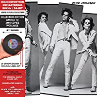 In Style - Cardboard Sleeve - High-Definition CD Deluxe Vinyl Replica by David Johansen (2012-12-04)