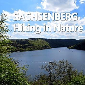 Hiking in Nature (Zweite Heimat Mix)