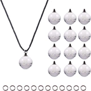 PH PandaHall 20pcs Dandelion Wish Glass Ball Bottles Charm Pendant, 18 inches Leather Necklace with Lobster Claw Clasps, 20pcs 4mm Jump Rings