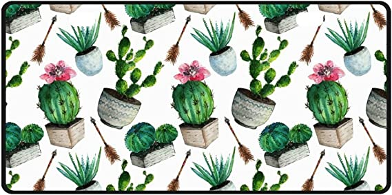 4 Holes Ja Yhou dontcy Watercolor Boho Cactus Succulent Flowers Twigs Feathers and Arrows Decorative Car Front License Plate,Vanity Tag,Metal Car Plate,Aluminum Novelty License Plate,6 X 12 Inch