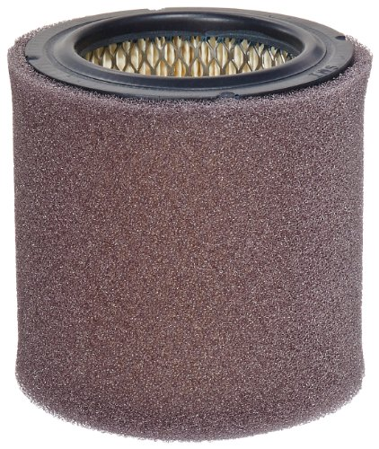 Solberg 18P Paper Filter Cartridge with Prefilter for Compressor, 4-3/4