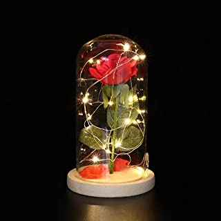 OSALADI Red Silk Rose Beauty and Beast with USB LED Copper Wire String Light Preserved in Glass Dome on Wooden Base with R...