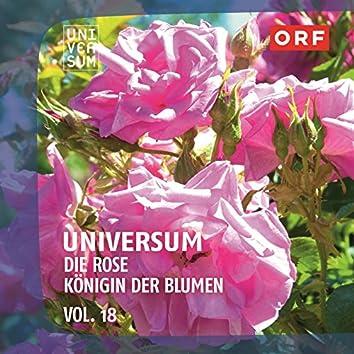 ORF Universum Vol.18