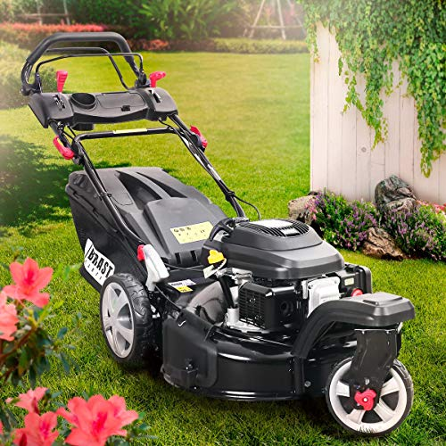 BRAST Benzin Rasenmäher Trike 4,4kW(6PS) Radantrieb 53cm Schnittbreite 196ccm Stahlgehäuse 60L Fangkorb 4-Takt Motor TÜV