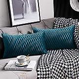 DEZENE 30 cm x 50 cm Taies d'oreiller Bleu Sarcelle: Pack de 2 Housses de Coussin Décoratif Rectangulaire en Velours Rayé Original pour Canapé de Chambre