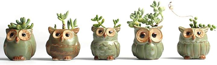 Vasos de flor de cerâmica em forma de coruja com desenho animado suculentas, cacto, flores, mini vaso, decoração de jardi...