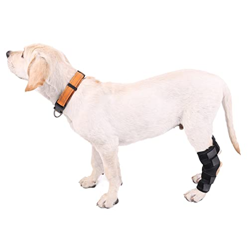 Dog Knee Brace: Amazon co uk