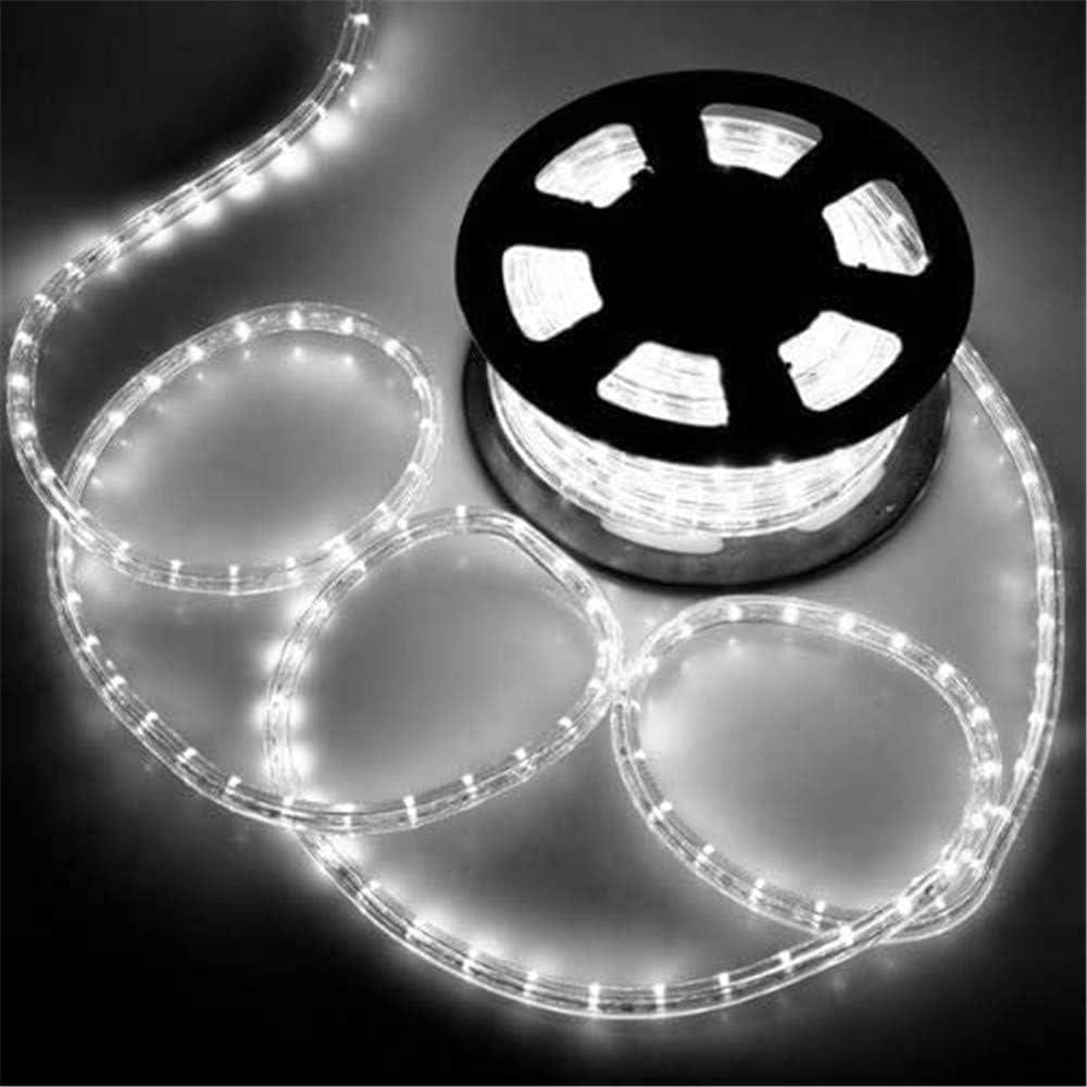 PUHONG 720 LED Christmas Rope Atlanta Mall 100Ft Tube Lights Philadelphia Mall 2-Wire 1