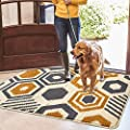 "Color&Geometry Indoor Doormat Indoor Outdoor 24""x36"" Mat Waterproof, Non Slip Washable Quickly Absorb Moisture and Resist Dirt Rugs for Entrance"