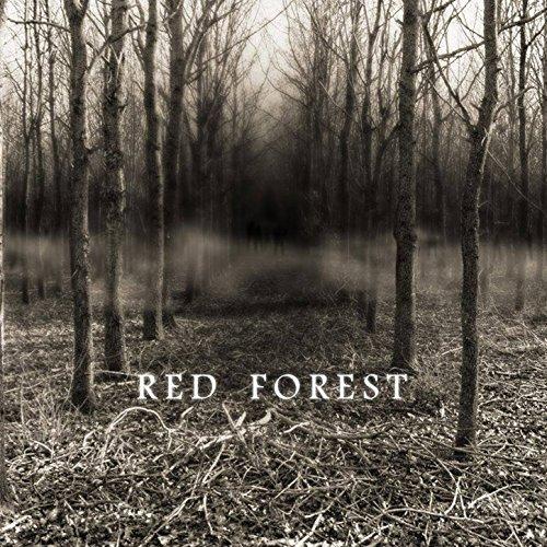 Dans les bois eternels