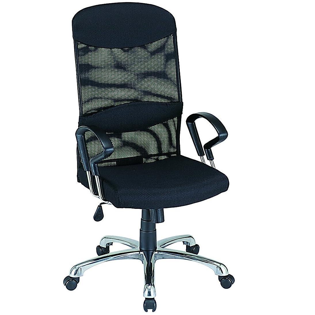 首謀者韻カポックナカバヤシ ネットチェア ハイバック オフィスチェア 椅子 ブラック RZS-102BK