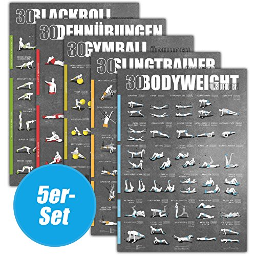 WINDHUND Fitness Poster 5er-Set (Bodyweight Sling Gymball Dehnen Blackroll)