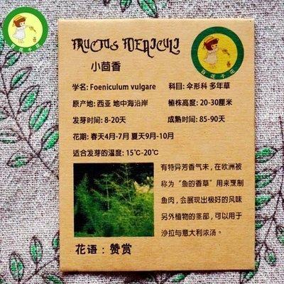 Stérilisation des semences de légumes, l'ail, les graines de poireaux - 100 pcs / lot