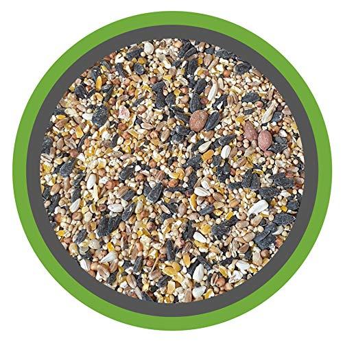 Meine Hennen (EUR 0,97/ kg) WILDVOGEL-VITAL 30 kg - Ganzjahres Premium Streufutter für Wildvögel mit Erdnüsse