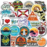 Florida Sticker Pack for car Florida VSCO Stickers for Real Patriot of Their Motherland Florida Decal for Window