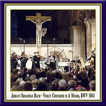 Bach: Violin Concerto No. 1 in A Minor, BWV 1041 (Live)
